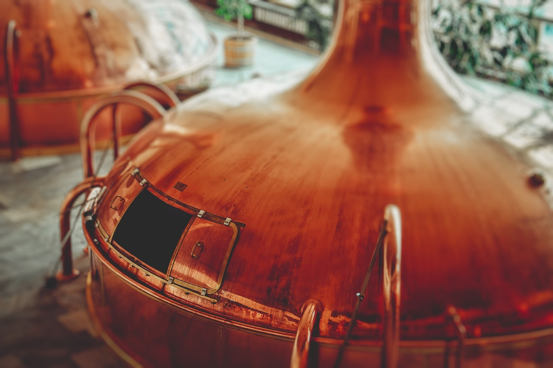 The Professional Brewing Process From Grain to Glass