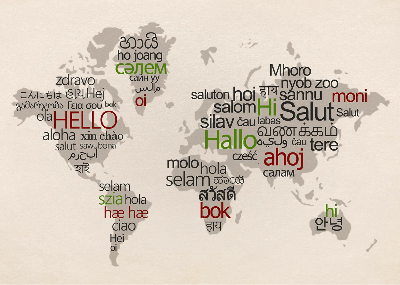 Teaching World Languages