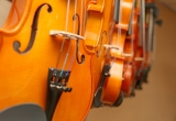 Violins on display
